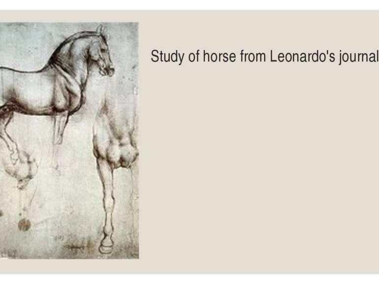 Study of horse from Leonardo's journal