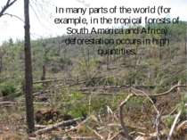 In many parts of the world (for example, in the tropical forests of South Ame...