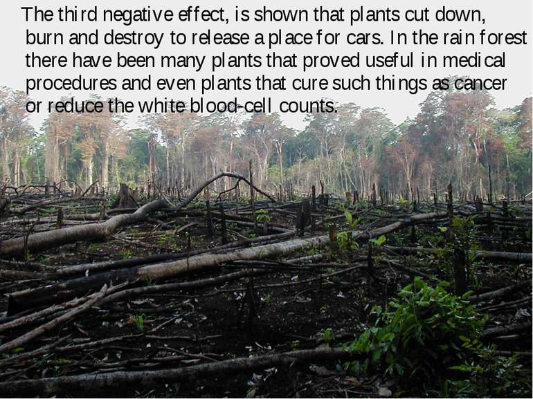 The third negative effect, is shown that plants cut down, burn and destroy to...