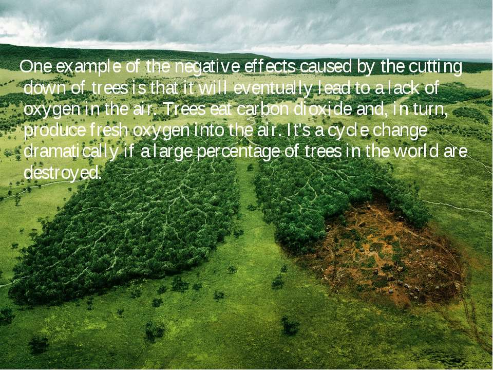 One example of the negative effects caused by the cutting down of trees is th...
