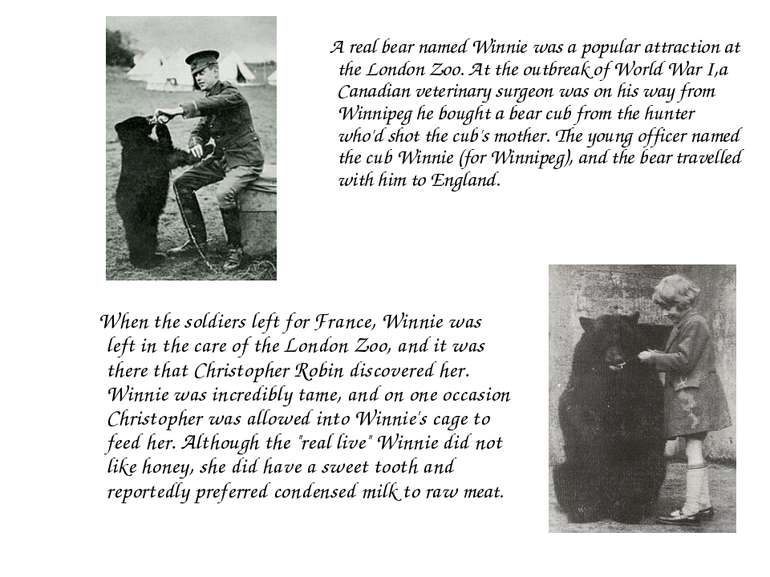 A real bear named Winnie was a popular attraction at the London Zoo. At the o...