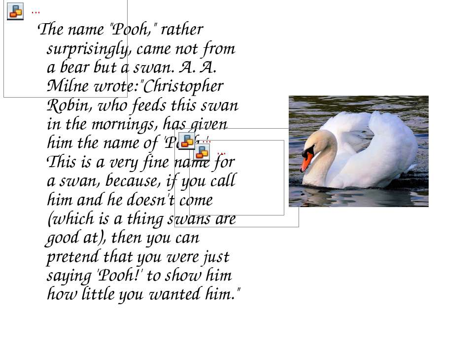 "The name ""Pooh,"" rather surprisingly, came not from a bear but a swan. A. A. ..."