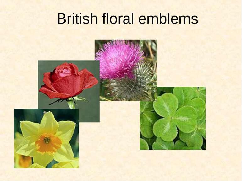 British floral emblems