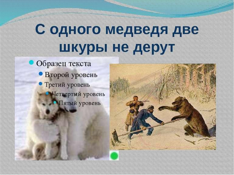 С одного медведя две шкуры не дерут