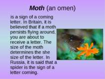 Moth (an omen) is a sign of a coming letter. In Britain, it is believed that ...