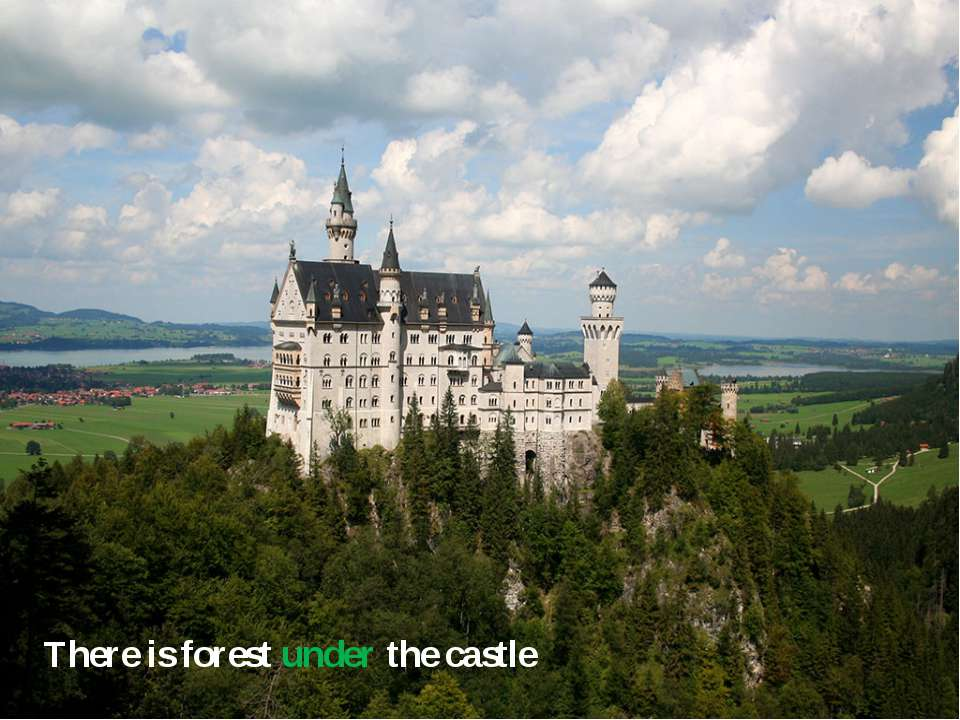 There is forest under the castle