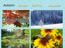 Winter Spring Summer Autumn