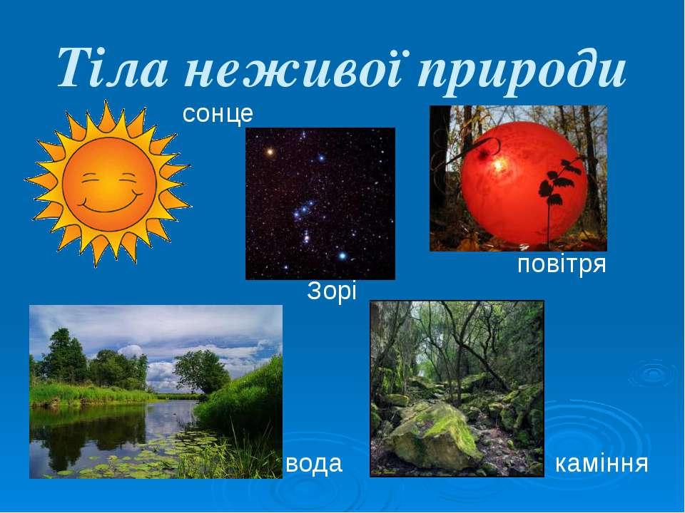 Тіла неживої природи сонце Зорі повітря вода каміння