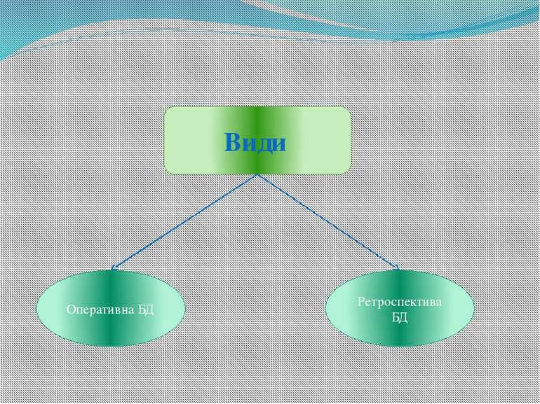 Види Оперативна БД Ретроспектива БД