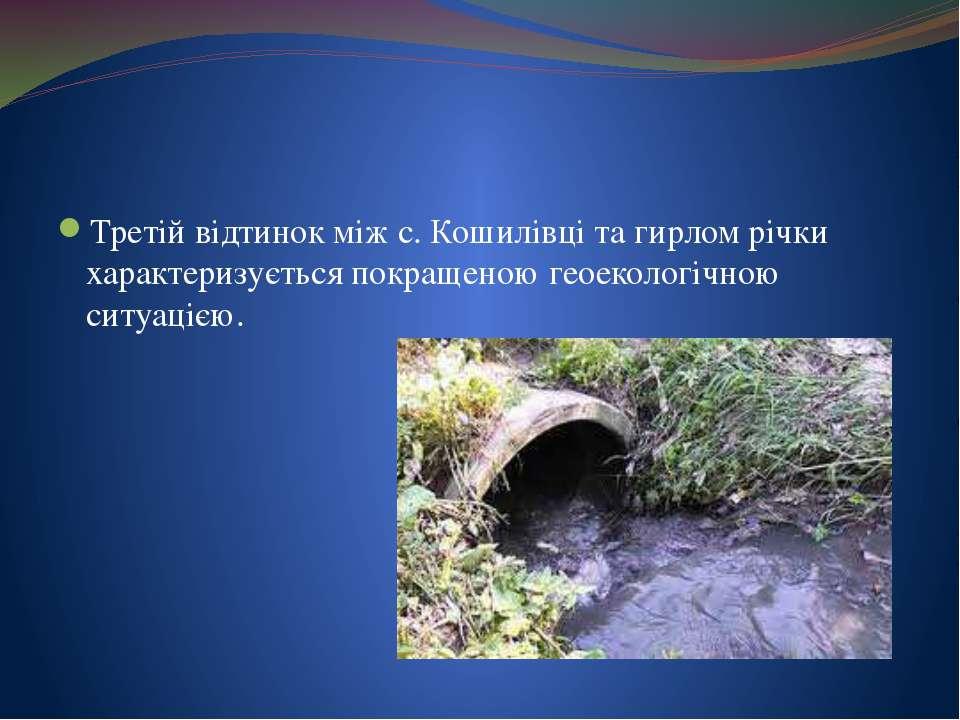 Третій відтинок між с. Кошилівці та гирлом річки характеризується покращеною ...