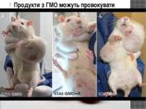Продукти з ГМО можуть провокувати рак. Трансгени мають властивість вбудовуват...