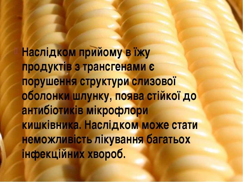 Наслідком прийому в їжу продуктів з трансгенами є порушення структури слизово...