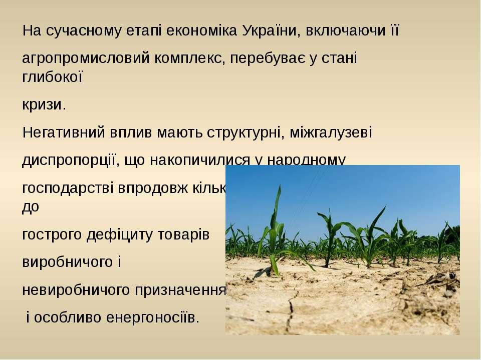 На сучасному етапі економіка України, включаючи її агропромисловий комплекс, ...
