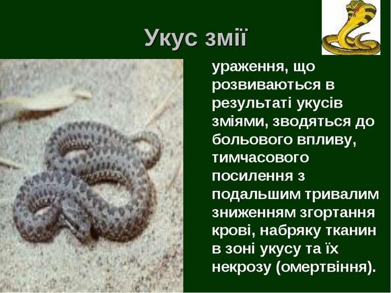 Укус змії ураження, що розвиваються в результаті укусів зміями, зводяться до ...