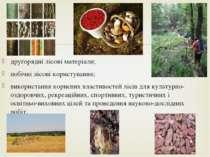 другорядні лісові матеріали; побічні лісові користування; використання корисн...
