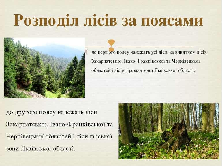 до першого поясу належать усі ліси, за винятком лісів Закарпатської, Івано-Фр...
