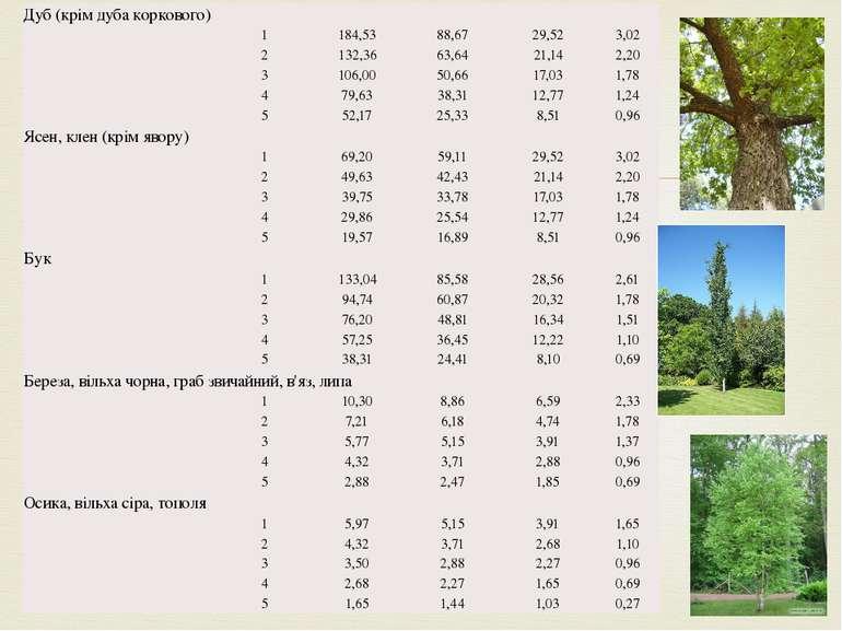 Дуб (крім дуба коркового)  1 184,53 88,67 29,52 3,02 2 132,36 63,64 21,14 2,...