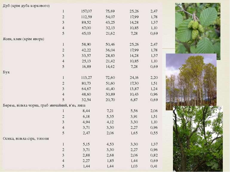 Дуб (крім дуба коркового)  1 157,07 75,69 25,26 2,47 2 112,59 54,07 17,99 1,...