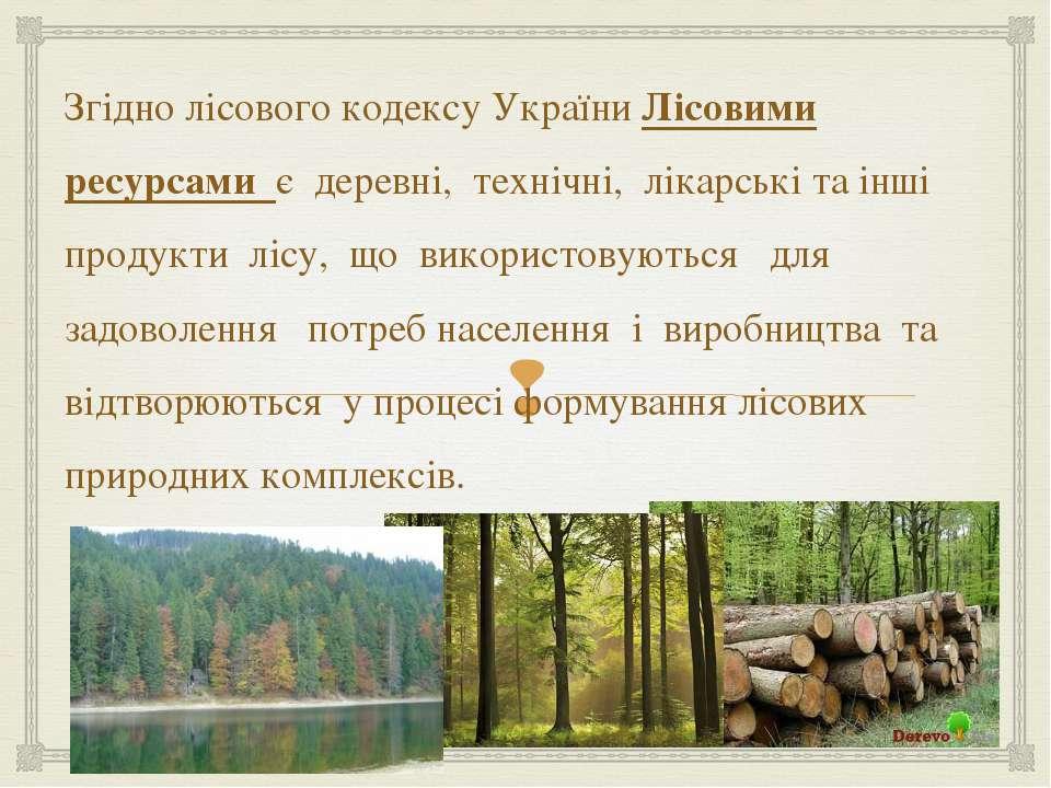 Згідно лісового кодексу України Лісовими ресурсами є деревні, технічні, лікар...