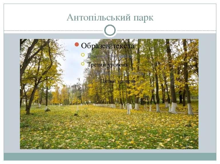 Антопільський парк