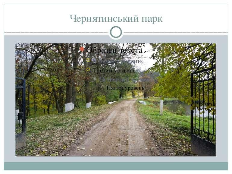 Чернятинський парк