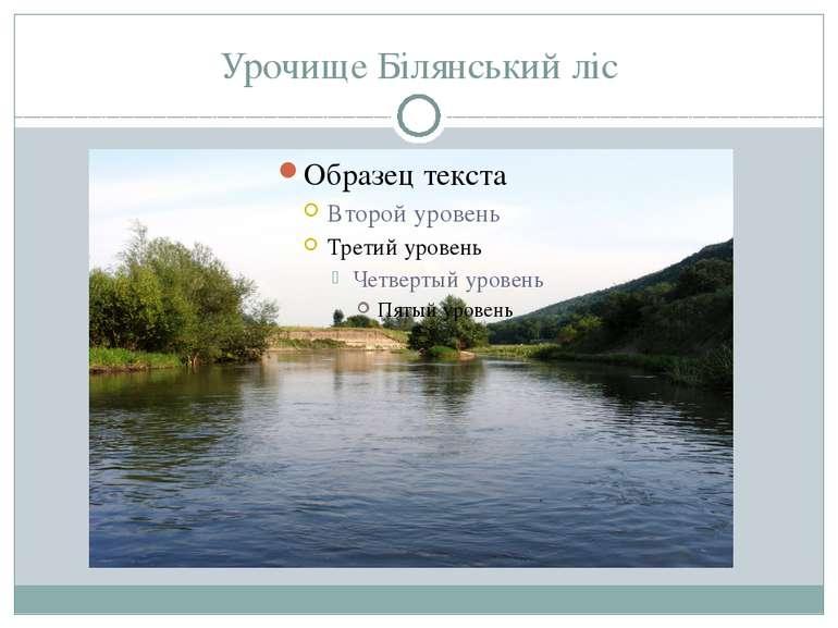 Урочище Білянський ліс