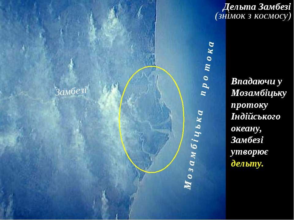 Дельта Замбезі (знімок з космосу) Впадаючи у Мозамбіцьку протоку Індійського ...