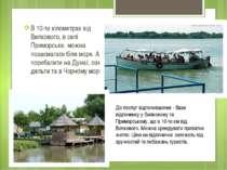 В 10-ти кілометрах від Вилкового, в селі Приморське, можна позасмагати біля м...