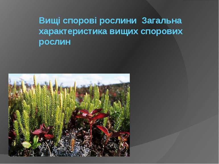 Вищі спорові рослини Загальна характеристика вищих спорових рослин
