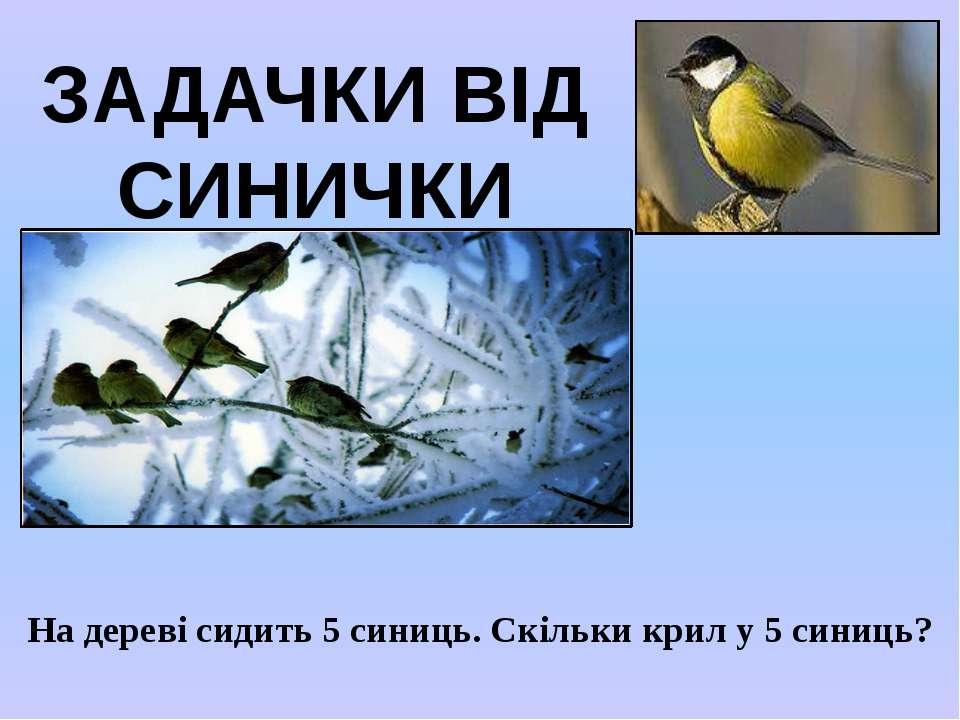 ЗАДАЧКИ ВІД СИНИЧКИ На дереві сидить 5 синиць. Скільки крил у 5 синиць?