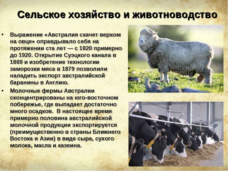 Сельское хозяйство и животноводство