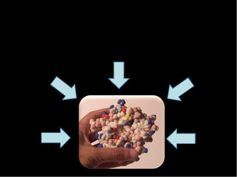 З чого складається білок? C H2 O2 N S
