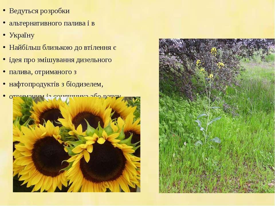 Ведуться розробки альтернативного палива і в Україну Найбільш близькою до вті...