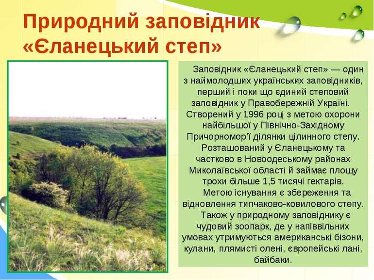 Природний заповідник «Єланецький степ» Заповідник «Єланецький степ» — один з ...
