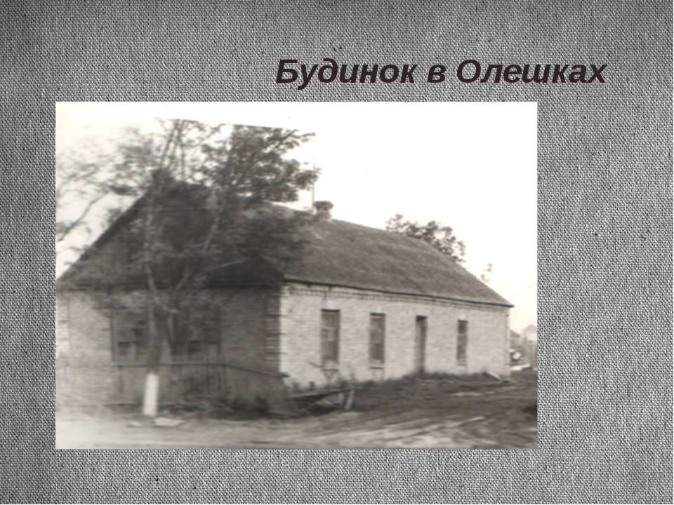 Будинок в Олешках Будинок в Олешках