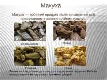 Макуха Макуха — побічний продукт після вичавлення олії пресуванням з насіння ...