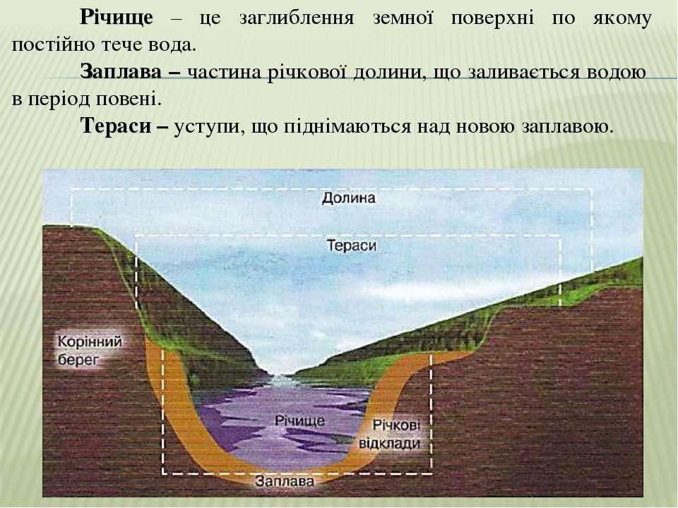 Річище – це заглиблення земної поверхні по якому постійно тече вода. Заплава ...
