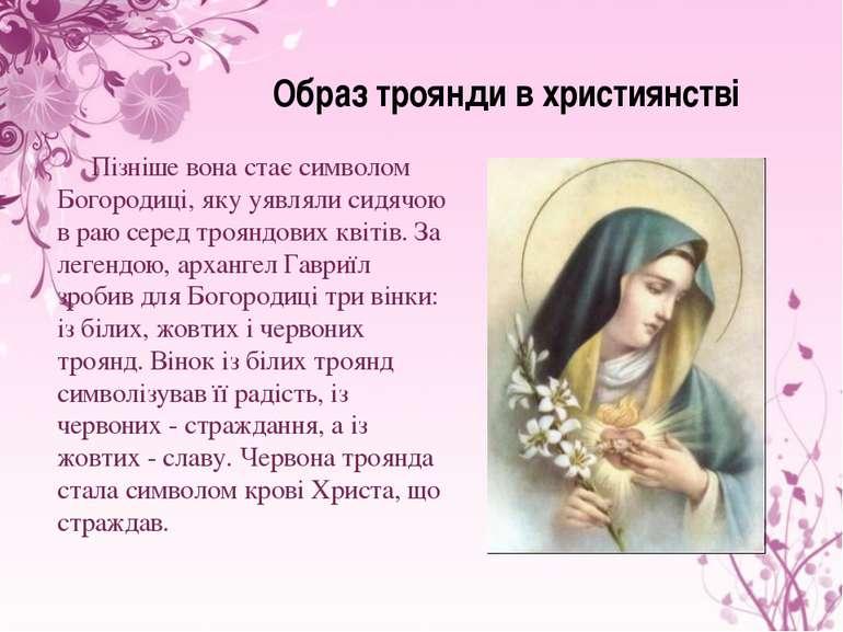 Образ троянди в християнстві Пізніше вона стає символом Богородиці, яку уявля...
