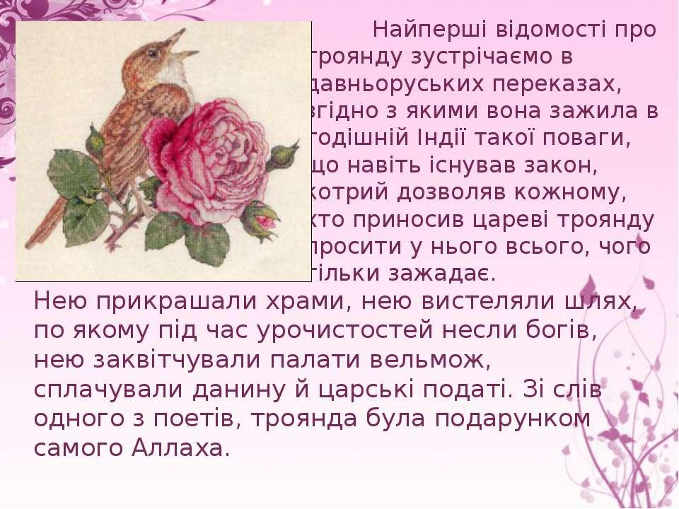 Найперші відомості про троянду зустрічаємо в давньоруських переказах, згідно ...