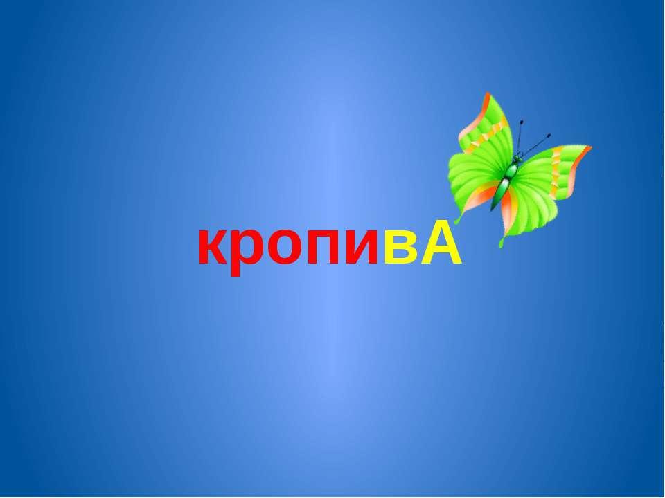 кропивА