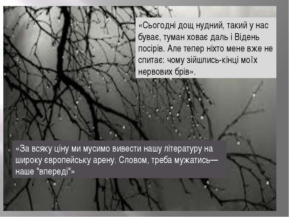«Сьогодні дощ нудний, такий у нас буває, туман ховає даль і Відень посірів. А...
