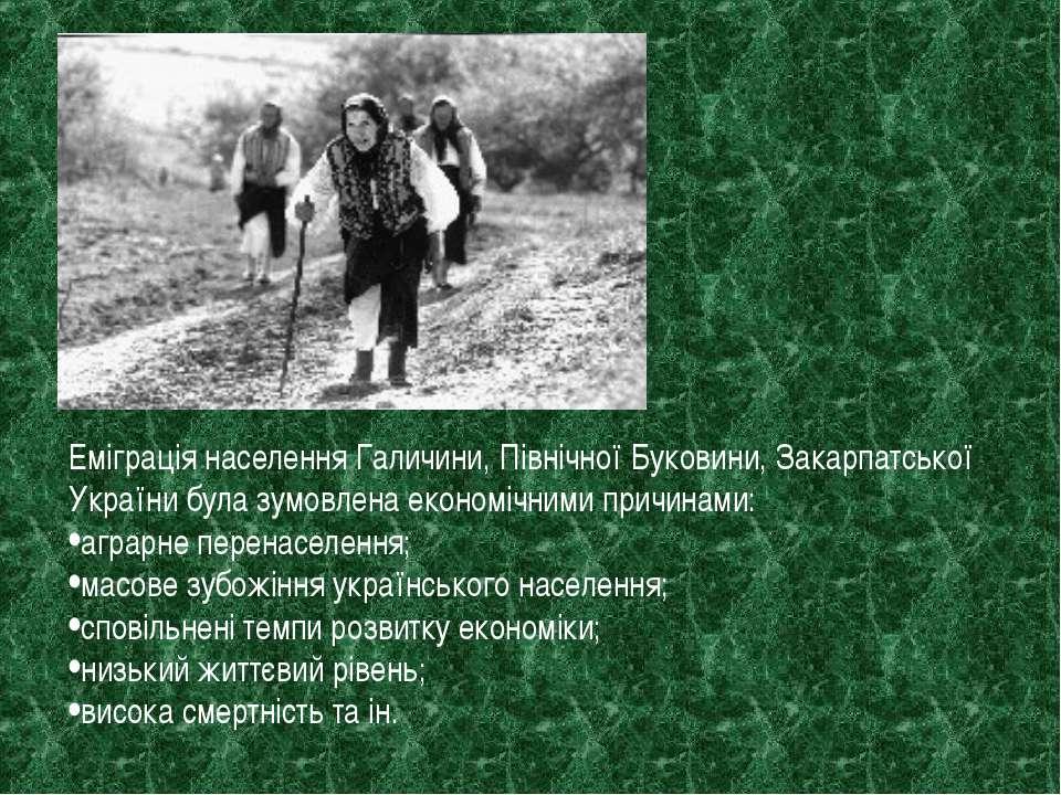 Еміграція населення Галичини, Північної Буковини, Закарпатської України була ...