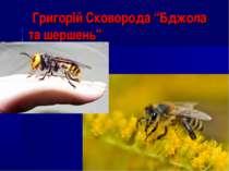 """Григорій Сковорода """"Бджола та шершень"""""""