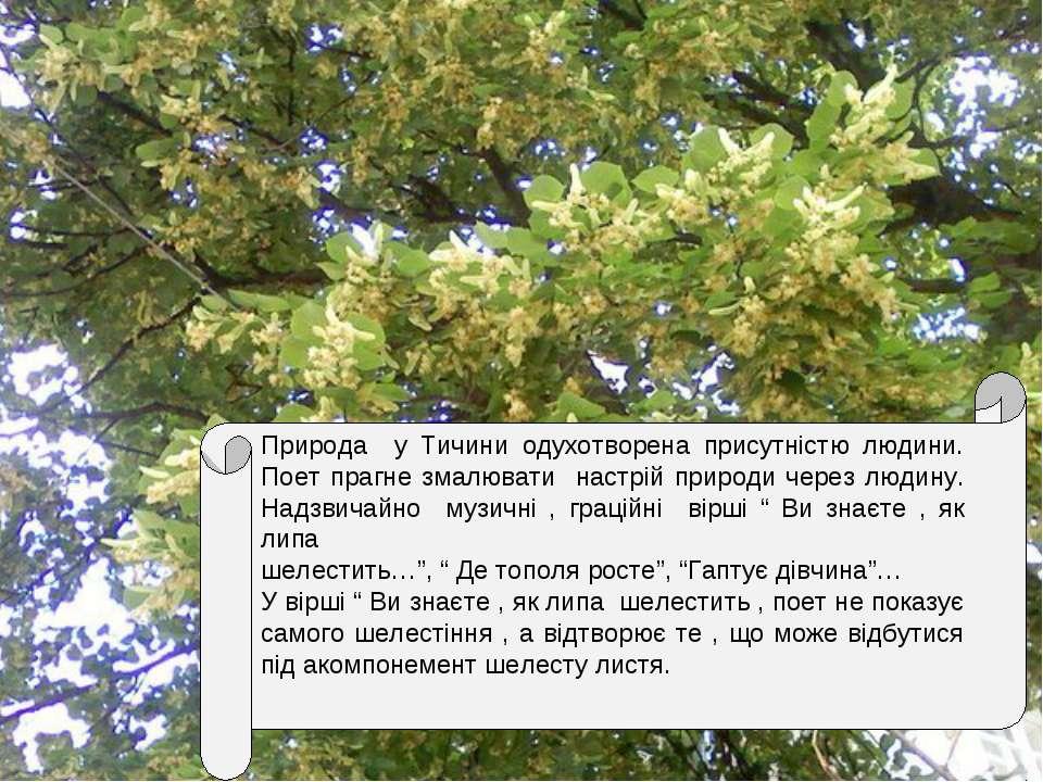 Природа у Тичини одухотворена присутністю людини. Поет прагне змалювати настр...