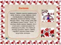 Калина - дерево нашого українського роду. Колись, у сиву давнину, вона пов'яз...