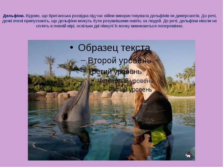 Дельфіни. Відомо, що британська розвідка під час війни використовувала дельфі...