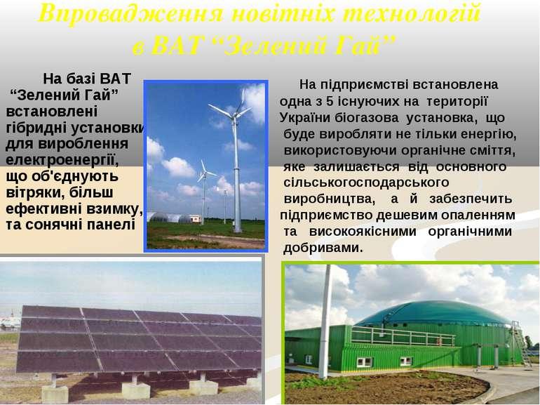 """Впровадження новітніх технологій в ВАТ """"Зелений Гай"""" На базі ВАТ """"Зелений Гай..."""