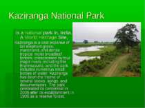 Kaziranga National Park   is a national park in, India. A World Heritage Site...
