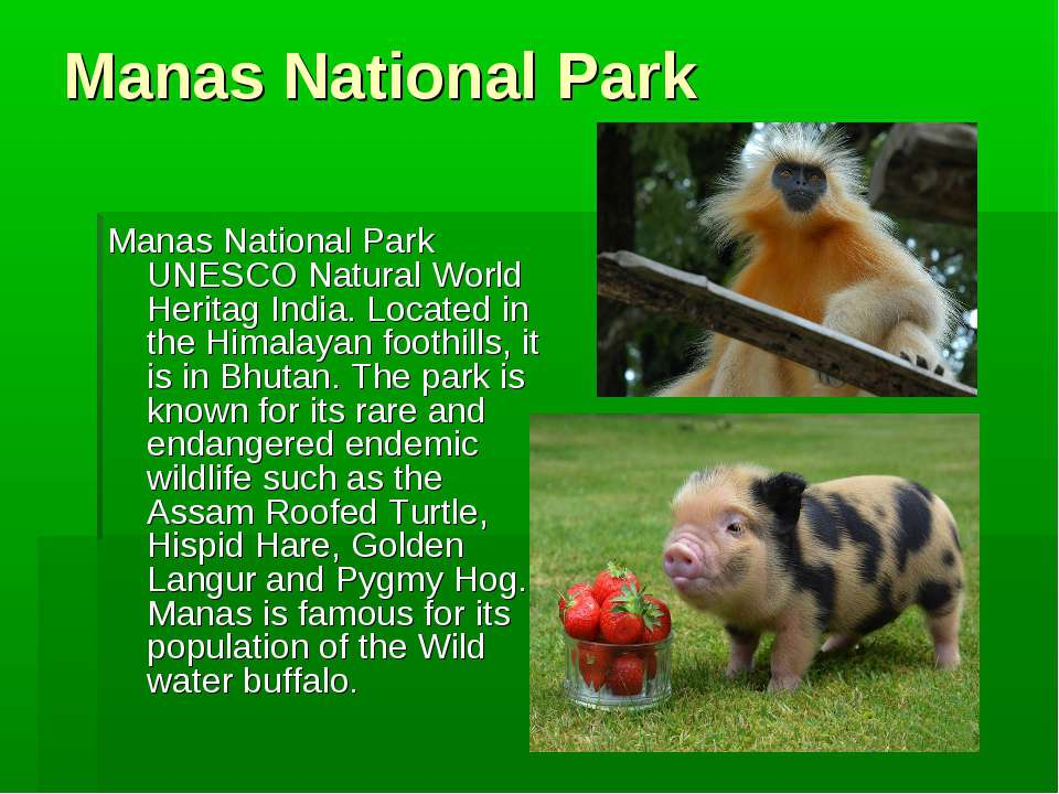 Manas National Park Manas National Park UNESCO Natural World Heritag India. L...