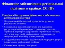 Фінансове забезпечення регіональної політики в країнах ЄС (IІ) Спеціальні інс...